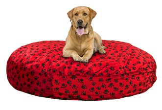 bean bag chair for dogs